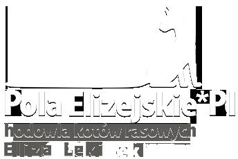 Pola elizejskie - hodowla kotów